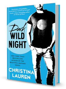 DarkWildNight_book