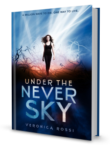 UndertheNeverSky_book